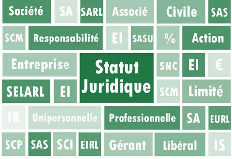 sociétés statut juridique