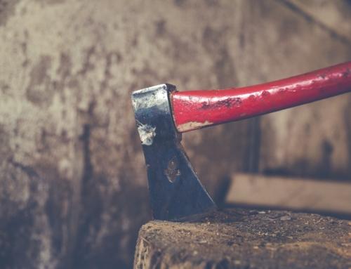 Obliger son voisin à élaguer ou arracher un arbre
